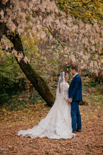 romantic, forest path, people, holding hands, bride, groom, dress, wedding, girl, tree