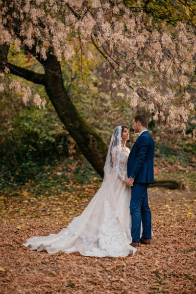 bride, standing, groom, autumn season, tree, branches, holding hands, forest, wedding, girl