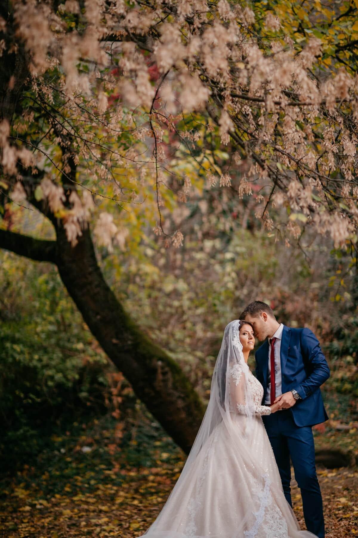 érzékenység, csók, menyasszony, érzelem, vőlegény, vadonban, lány, esküvő, fa, emberek