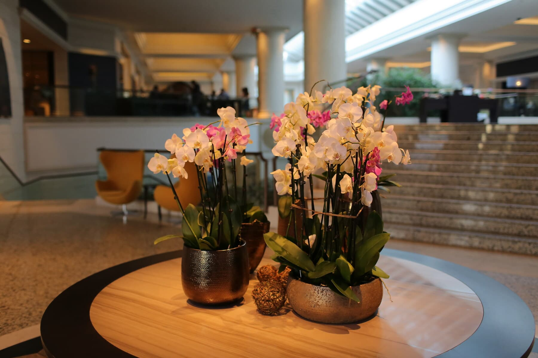 hotel, hallway, interior decoration, orchid, table, vase, flowers, bouquet, arrangement, interior design