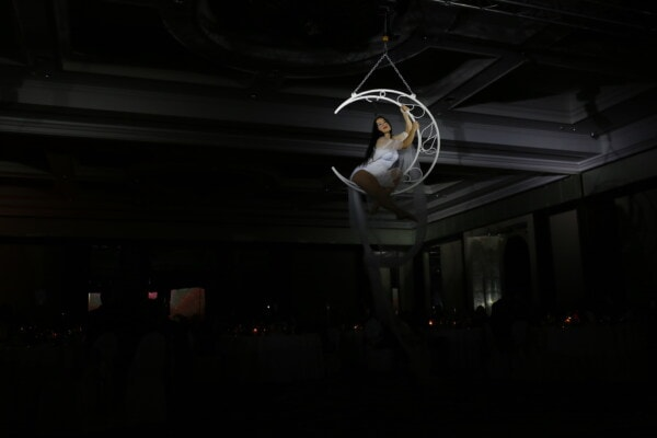 pretty girl, performance, performer, artist, entertainment, ceiling, hanging, spotlight, light, dark