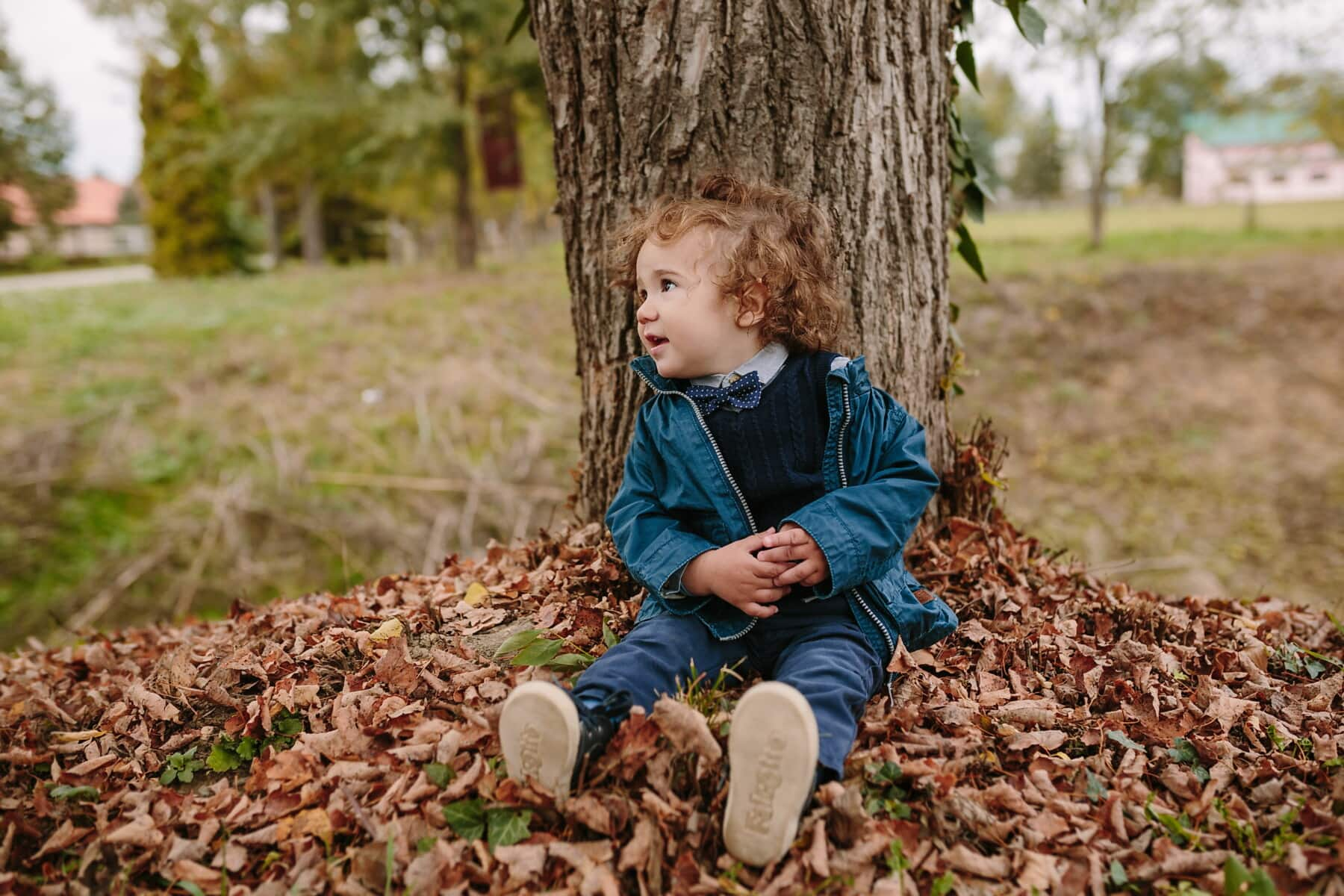 brunette, toddler, baby, park, autumn, child, nature, girl, smile, tree