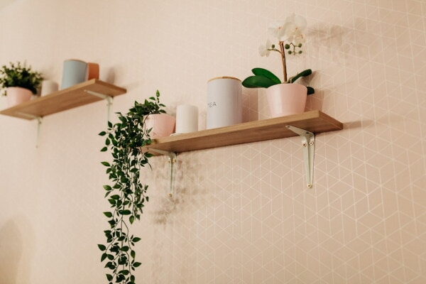 wall, shelf, flowerpot, orchid, elegant, miniature, minimalism, house, interior design, home