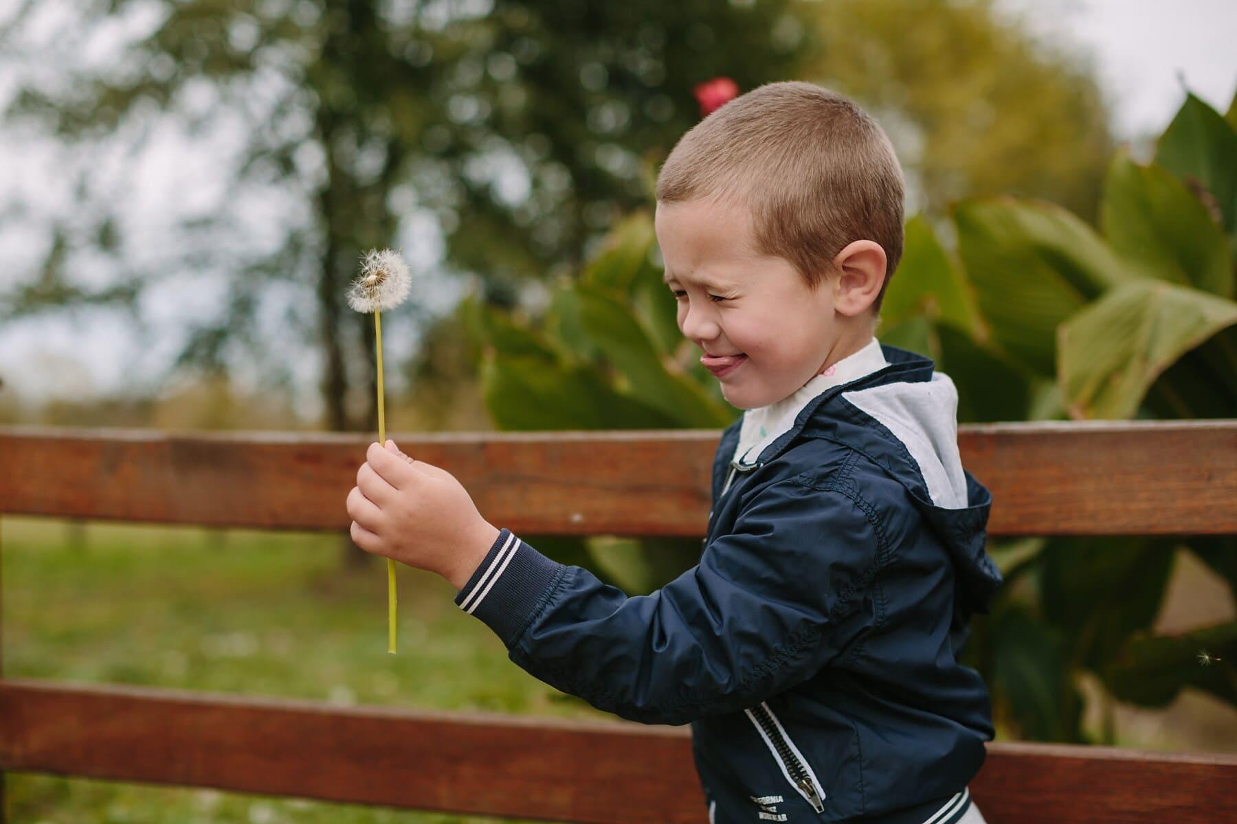 Αγόρι, παιχνιδιάρικο, πικραλίδα, εκμετάλλευση, σε εξωτερικούς χώρους, το παιδί, φύση, ελεύθερου χρόνου, διασκέδαση, πάρκο
