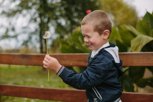 boy, playful, dandelion, holding, outdoors, child, nature, leisure, fun, park
