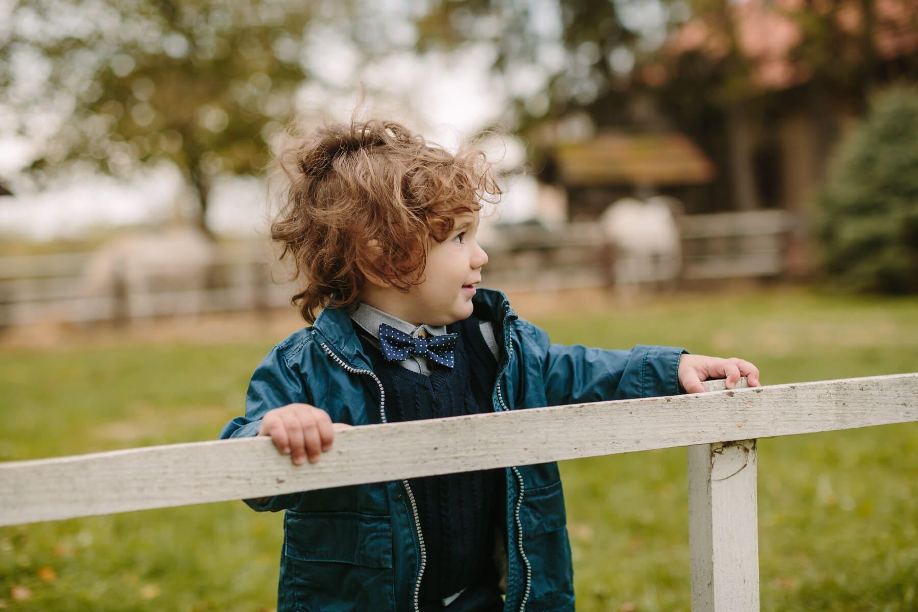enfant en bas âge, garçon, debout, clôture en lisse, village, campagne, mode, nœud papillon, enfant, mignon