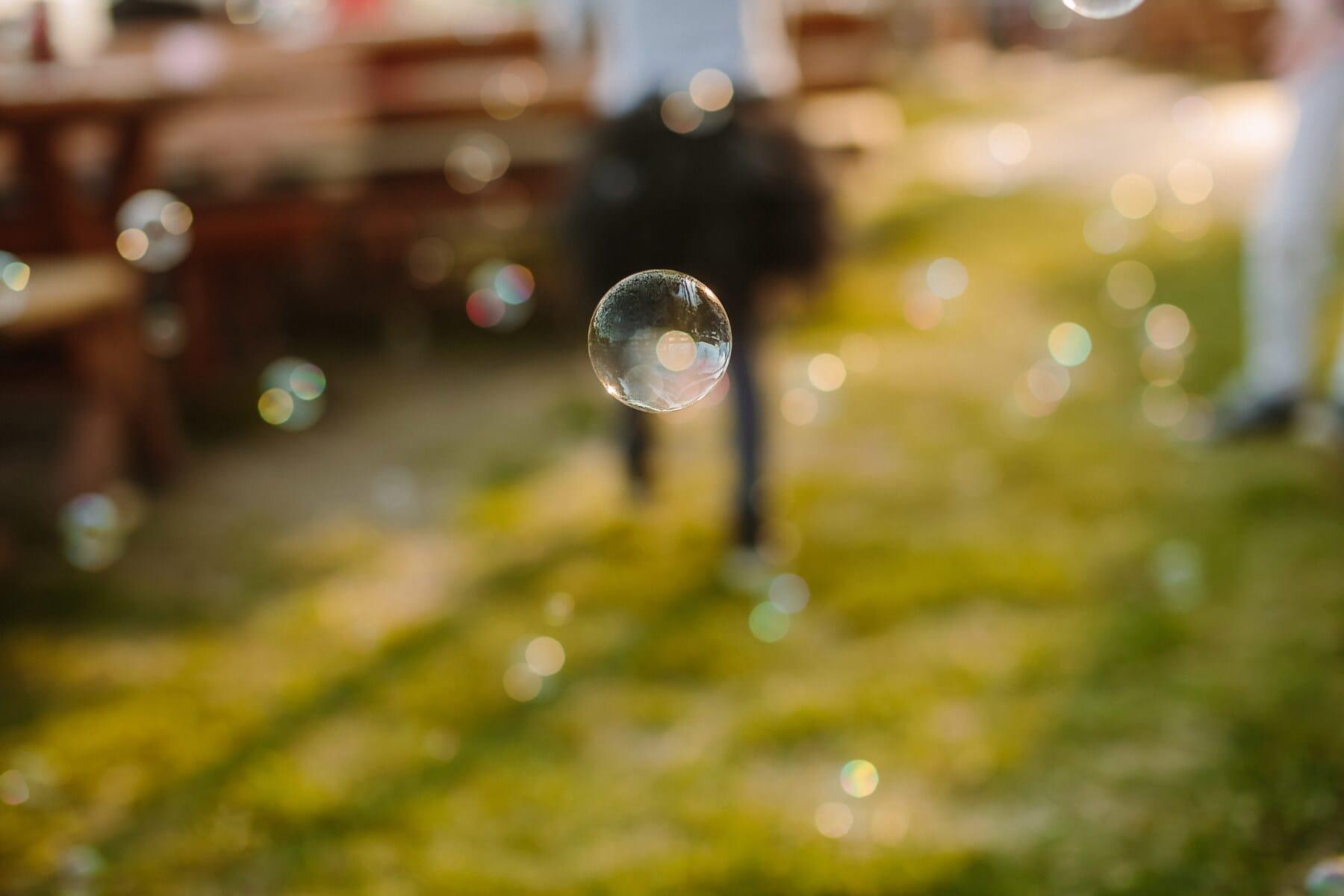 cetka, ucho, levitace, kola, koule, létání, svítí, reflexe, zaměření, rozostření