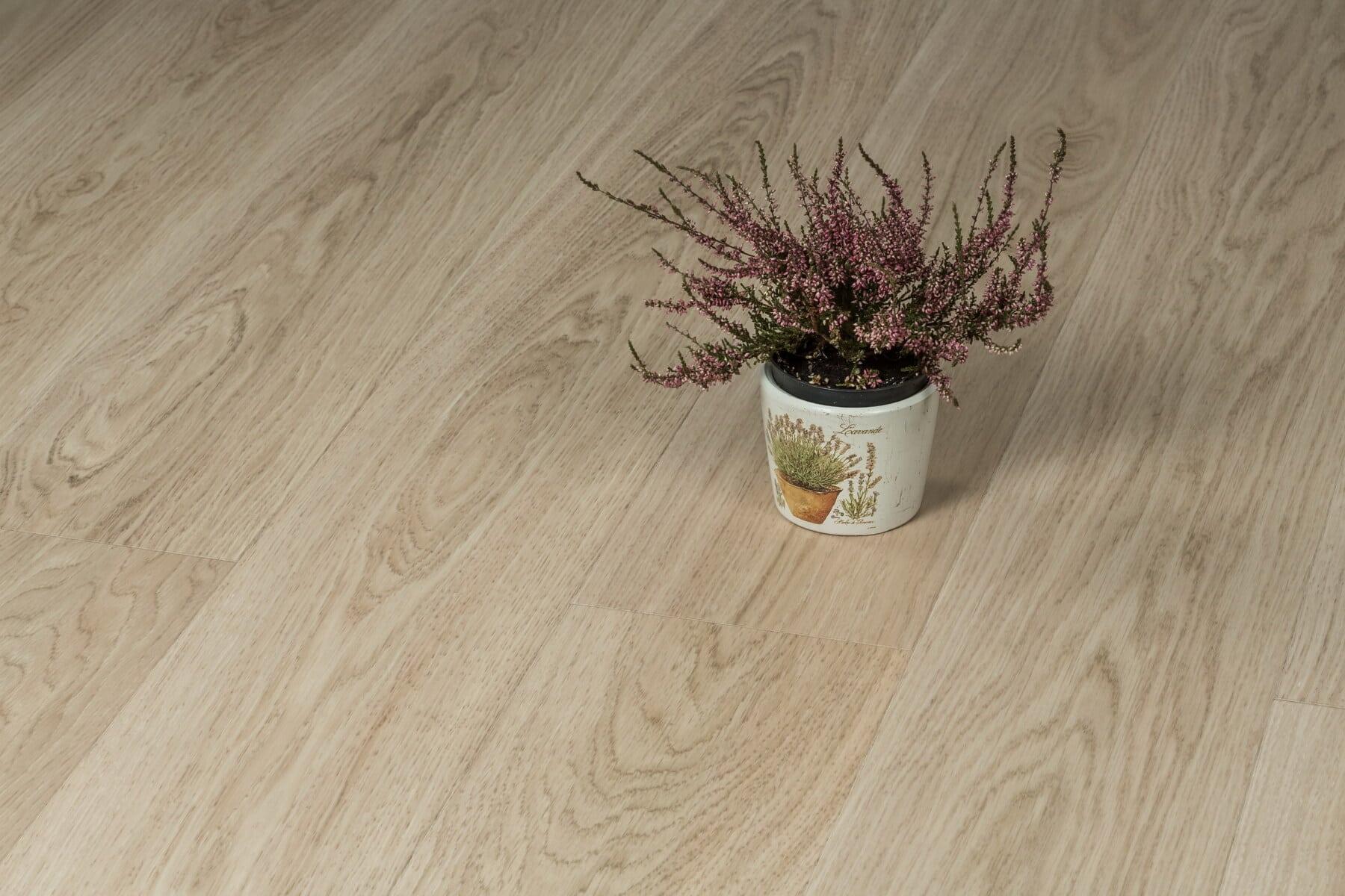 podea, lemn de esenta tare, maro deschis, Ghiveci de flori, parchet, lemn, frunze, interior design, din lemn, floare