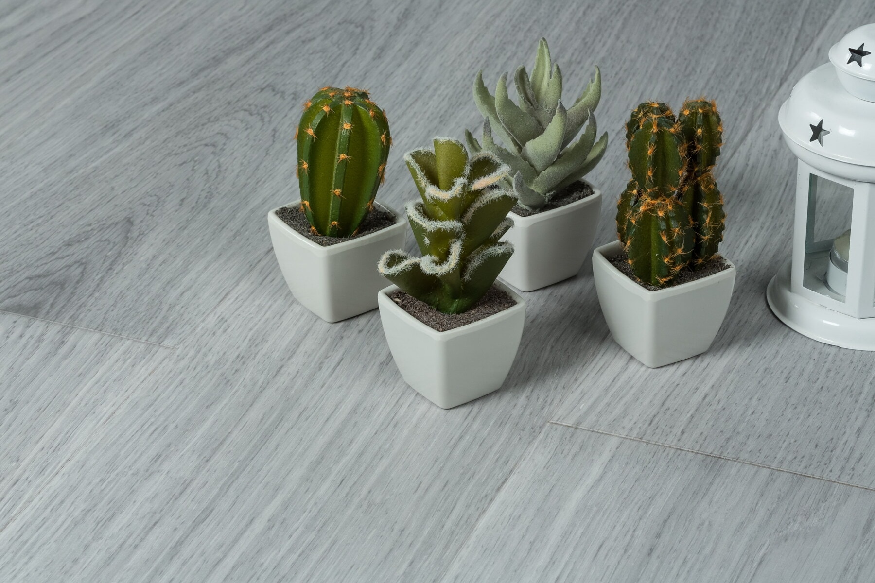 minimalism, interior design, miniature, interior decoration, flowerpot, elegant, cactus, detail, design, floor