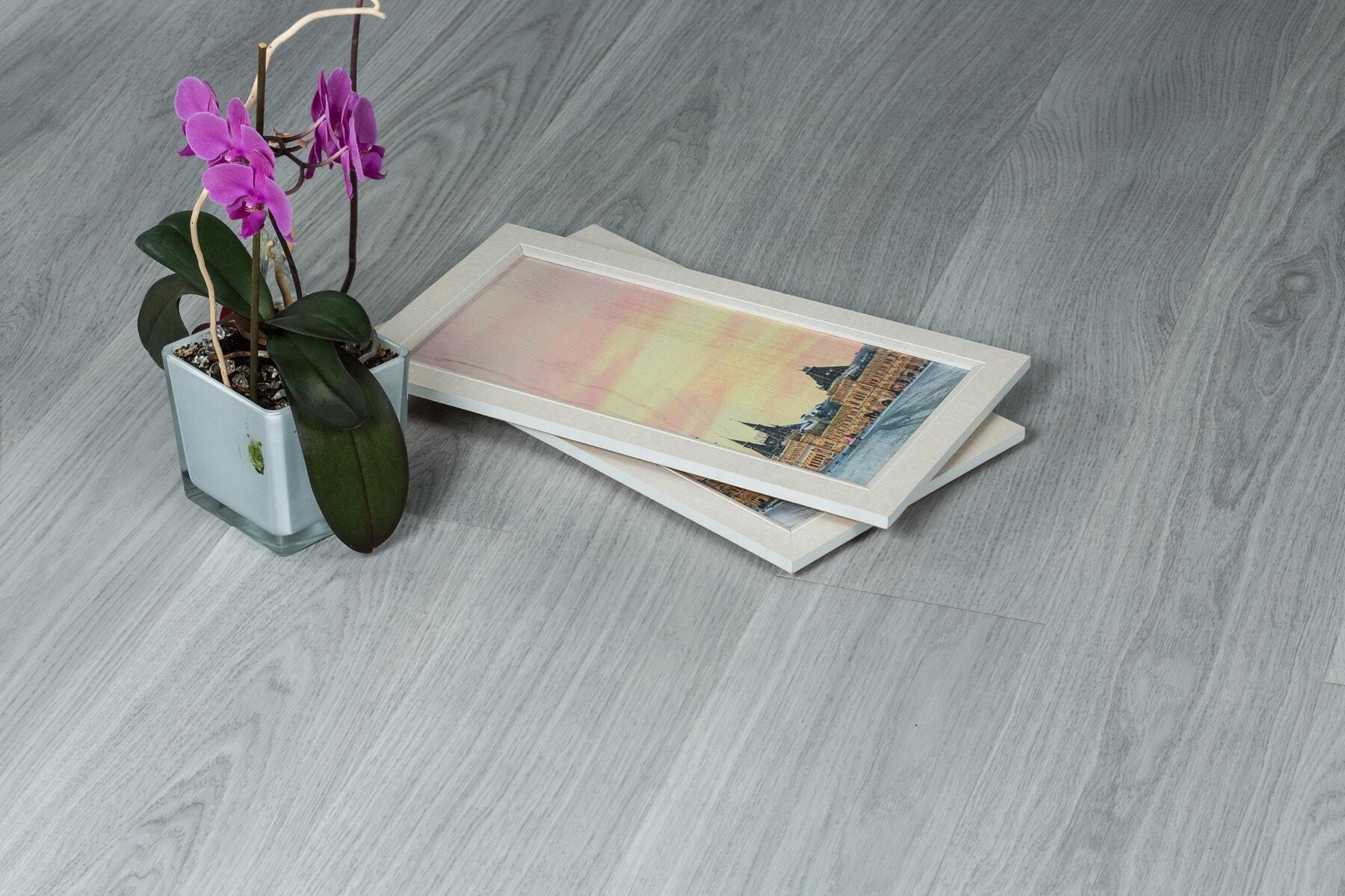 蘭, 紫色, ミニチュア, ミニマリズム, インテリア デザイン, フレーム, 画像, 花, 葉, レトロ