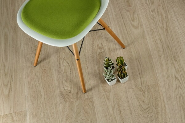 floor, chair, comfortable, photo studio, room, minimalism, miniature, cactus, flowerpot, wood
