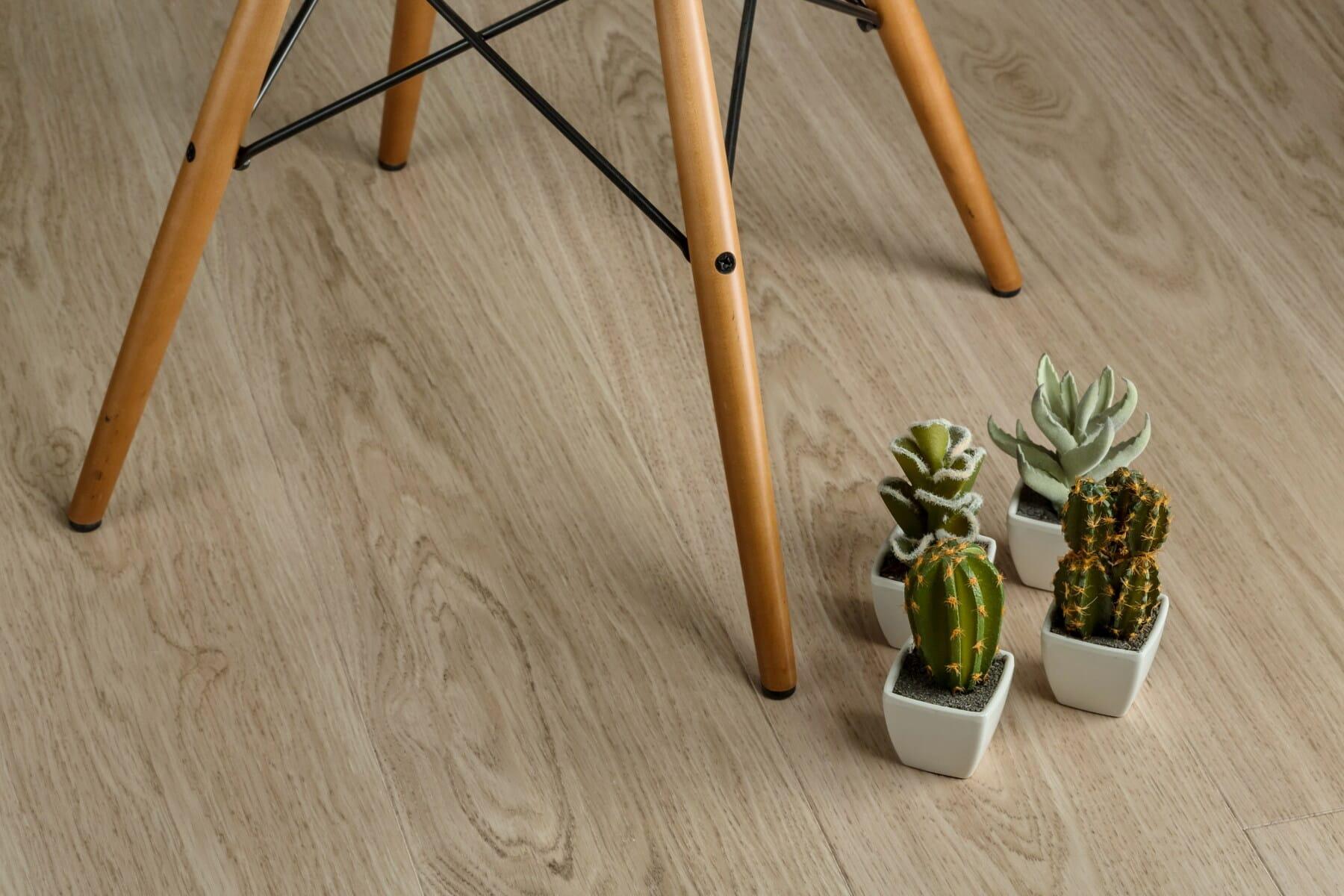 miniature, chair, cactus, floor, flowerpot, parquet, hardwood, stool, comfortable, wooden