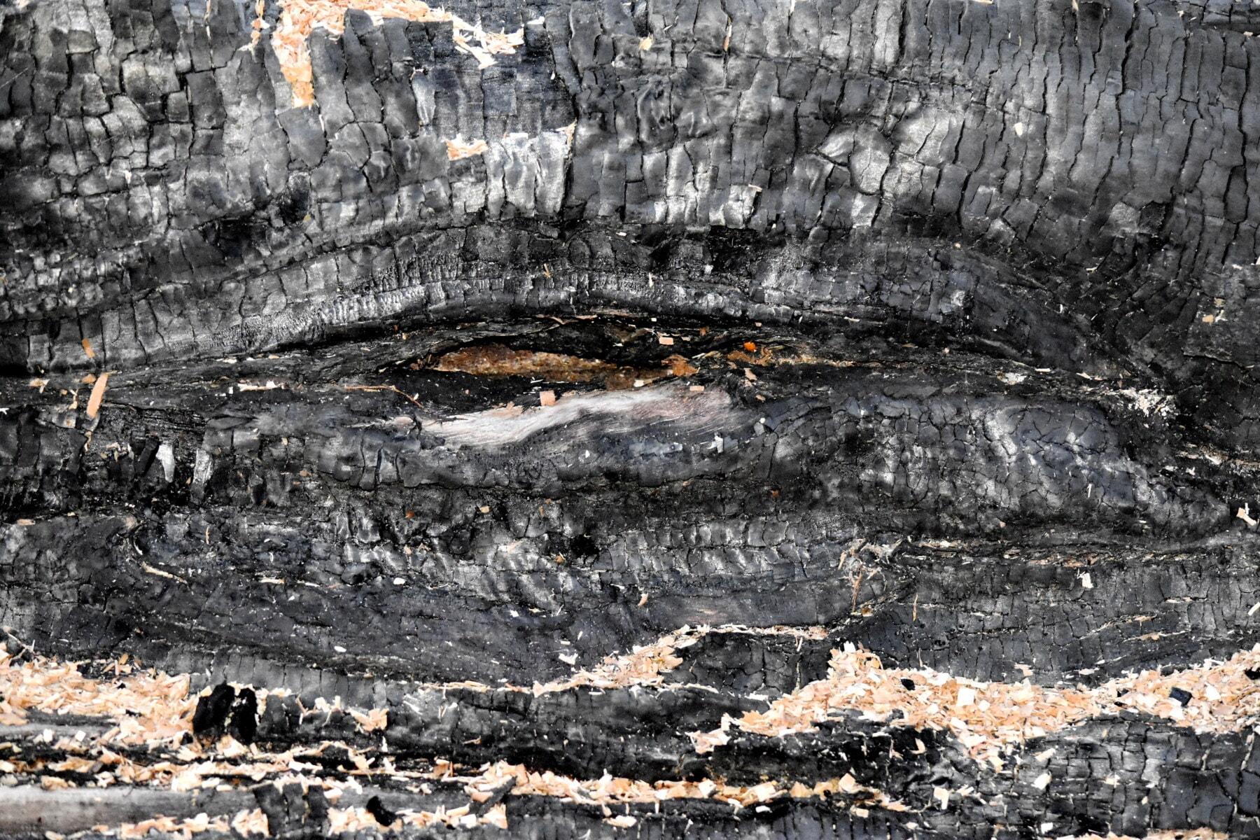 굽기, 어두운, 블랙, 텍스처, 표면, 나무, 애쉬, 석탄, 자연, 패턴