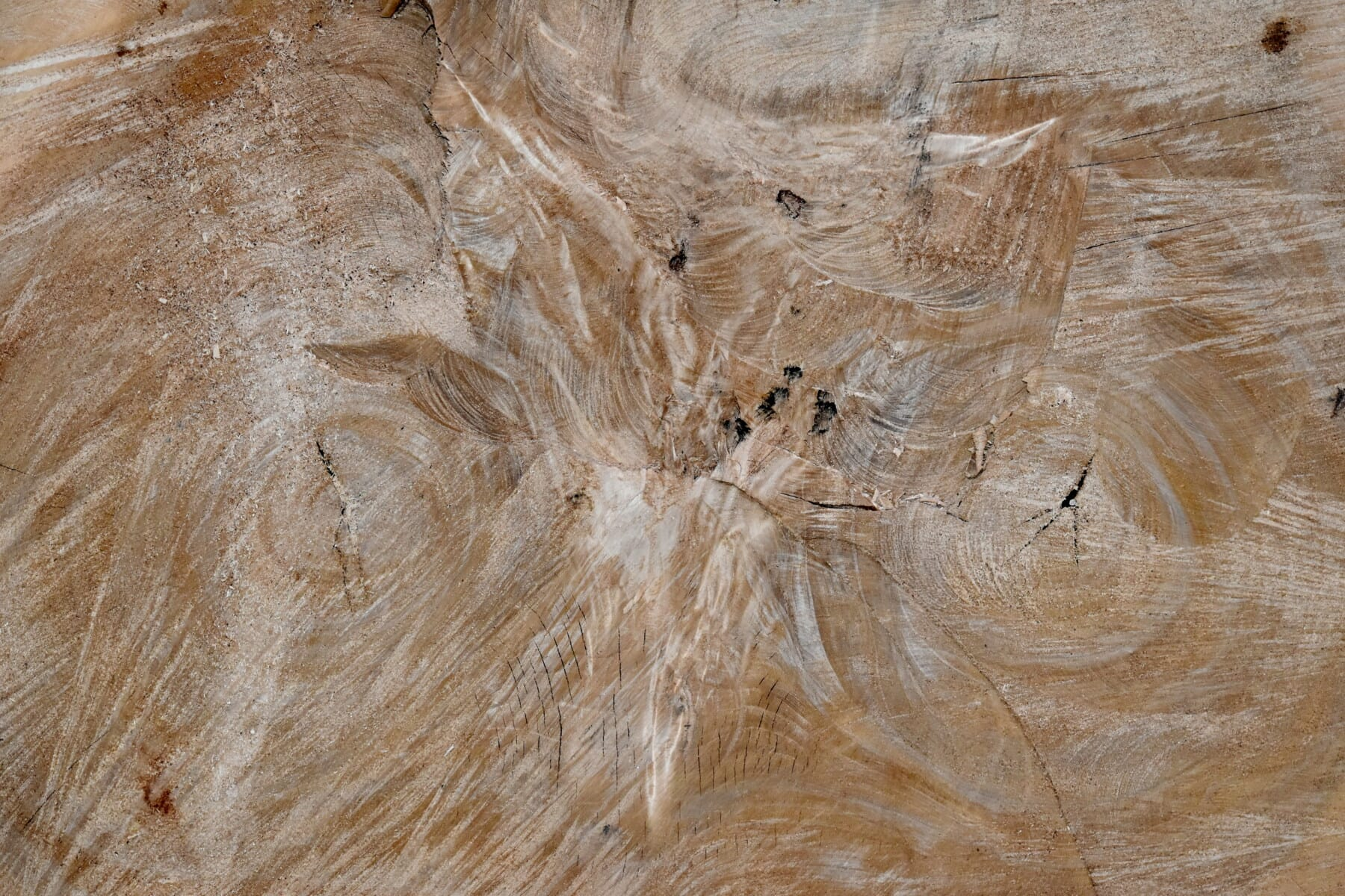 结, 木材, 横断面, 浅褐色, 大, 纹理, 性质, 粗糙, 模式, 老
