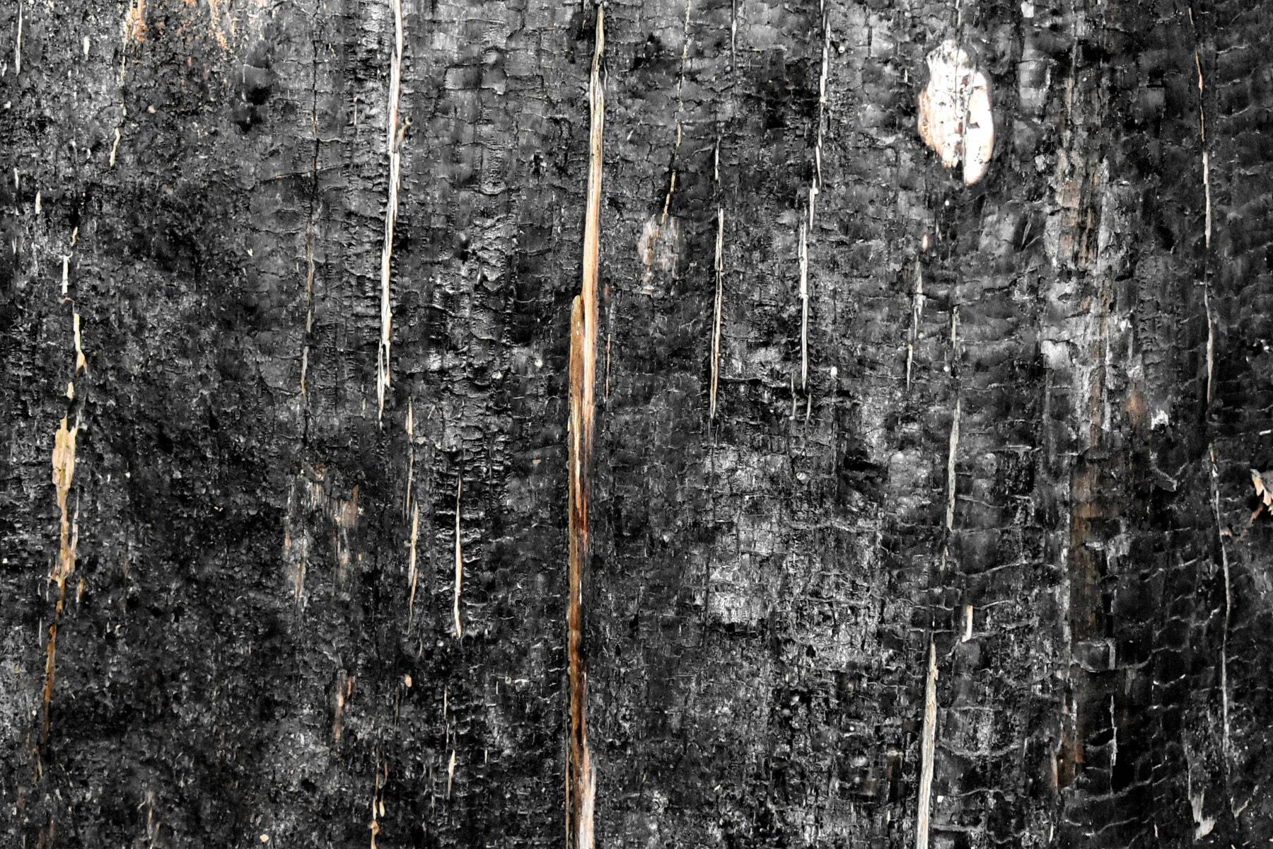 snimanje, crno, tekstura, drvo, ugljen, pepeo, prljavi, detalj, staro, drvo
