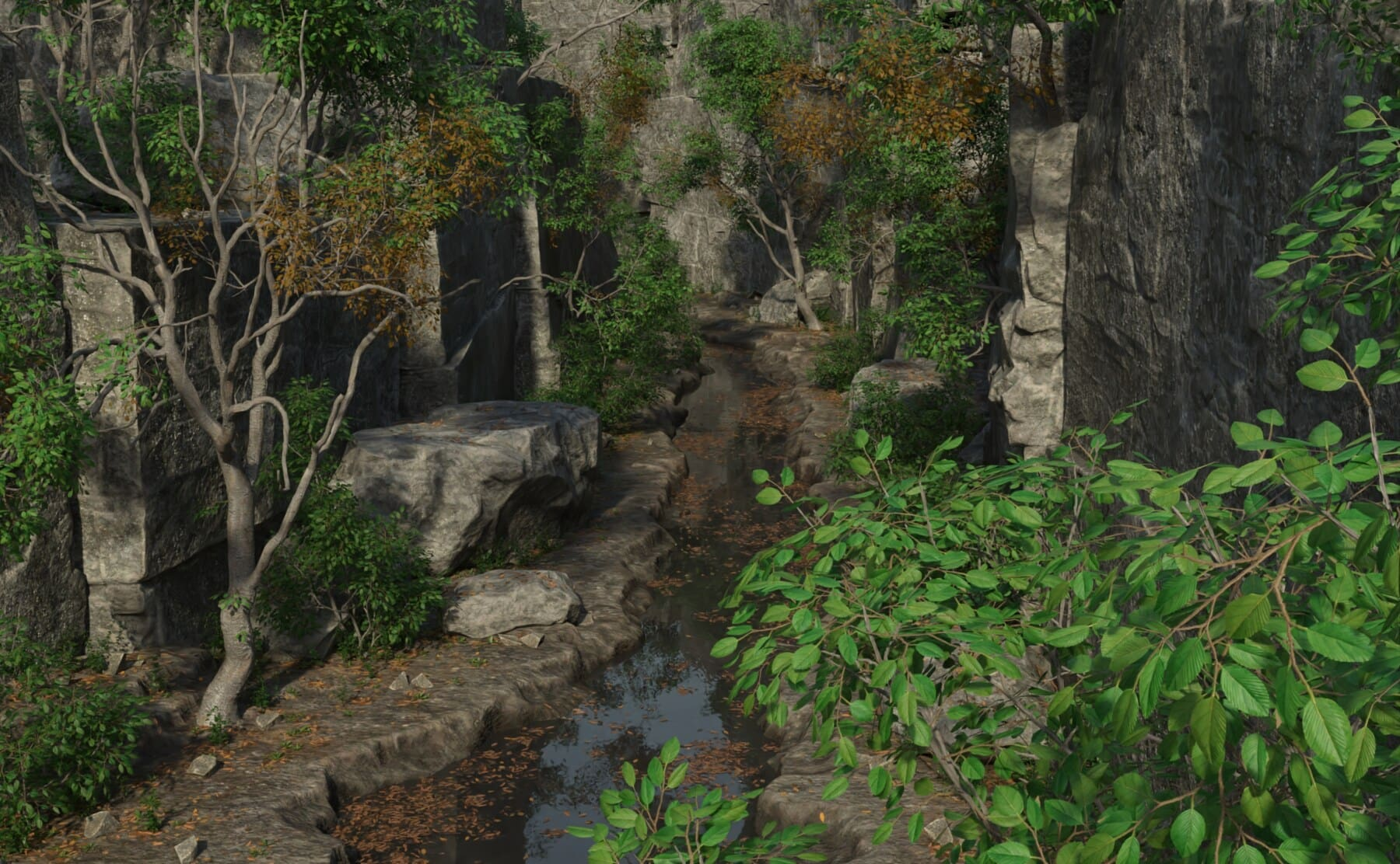 art, digital, visuals, photomontage, forest, creek, water, leaf, landscape, tree