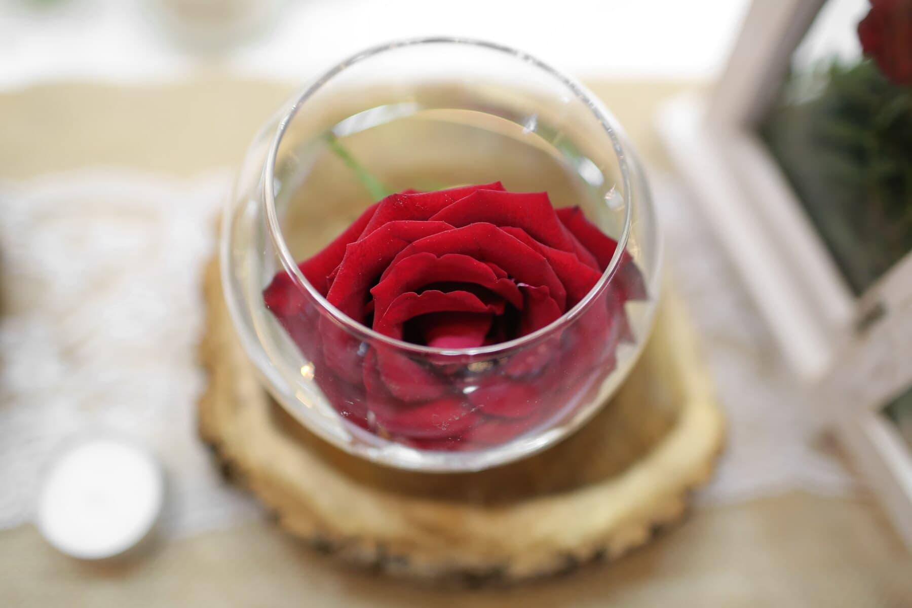 red, rose, glass, sphere, vase, romance, flower, wood, still life, indoors