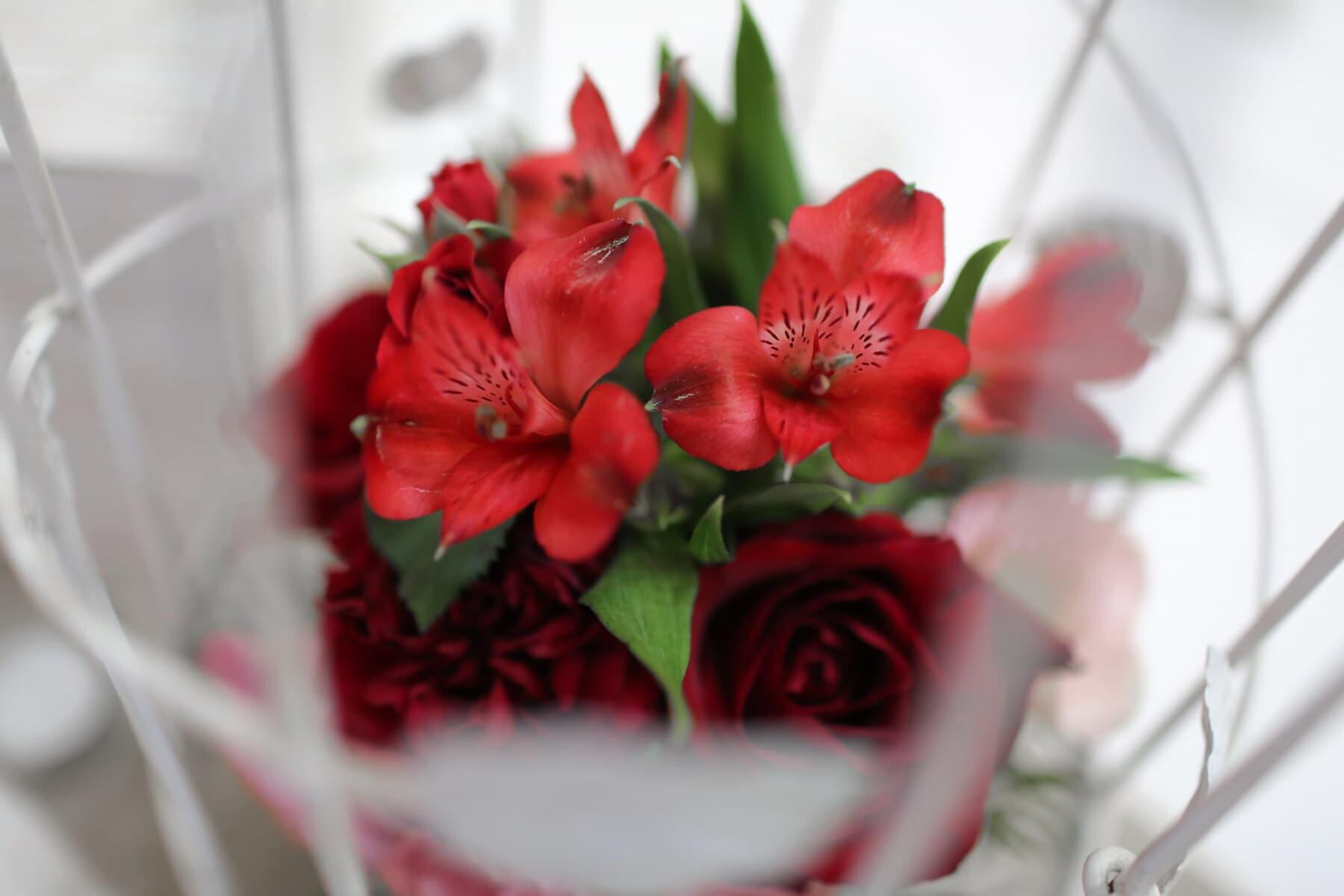flowers, elegant, flowerpot, petals, red, arrangement, nature, flower, decoration, romance