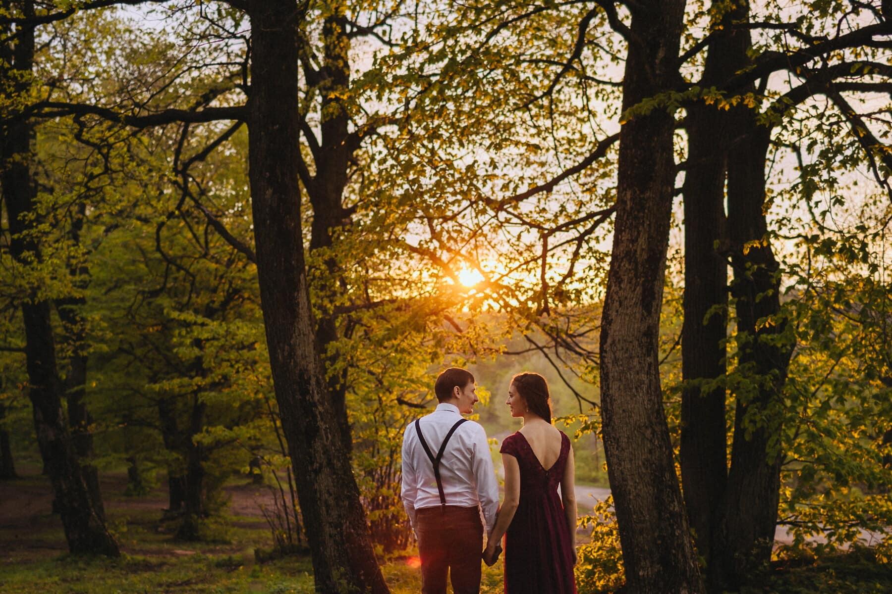 pertemuan cinta, matahari terbenam, kekasih, pacar, model tahun, pacar, lewat, emosi, daun, pohon