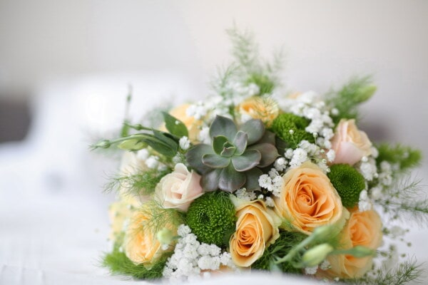 wedding bouquet, roses, cactus, elegant, vintage, close-up, bouquet, arrangement, decoration, wedding