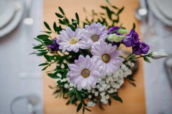 purple, roses, flowers, bouquet, lunchroom, arrangement, table, elegance, vintage, close-up