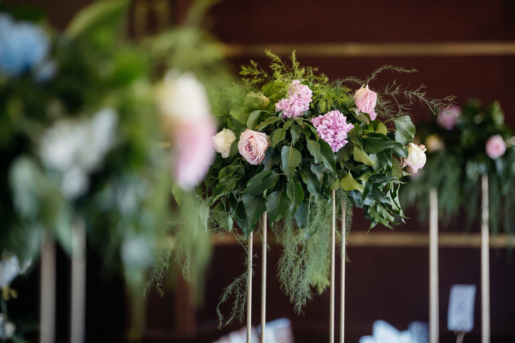 Vase, Still-Leben, Blumen, Natur, Blatt, Anlage, Anordnung, Blume, Blumenstrauß, Dekoration