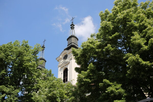 monastery, orthodox, church tower, church, branches, trees, building, dome, religion, cross
