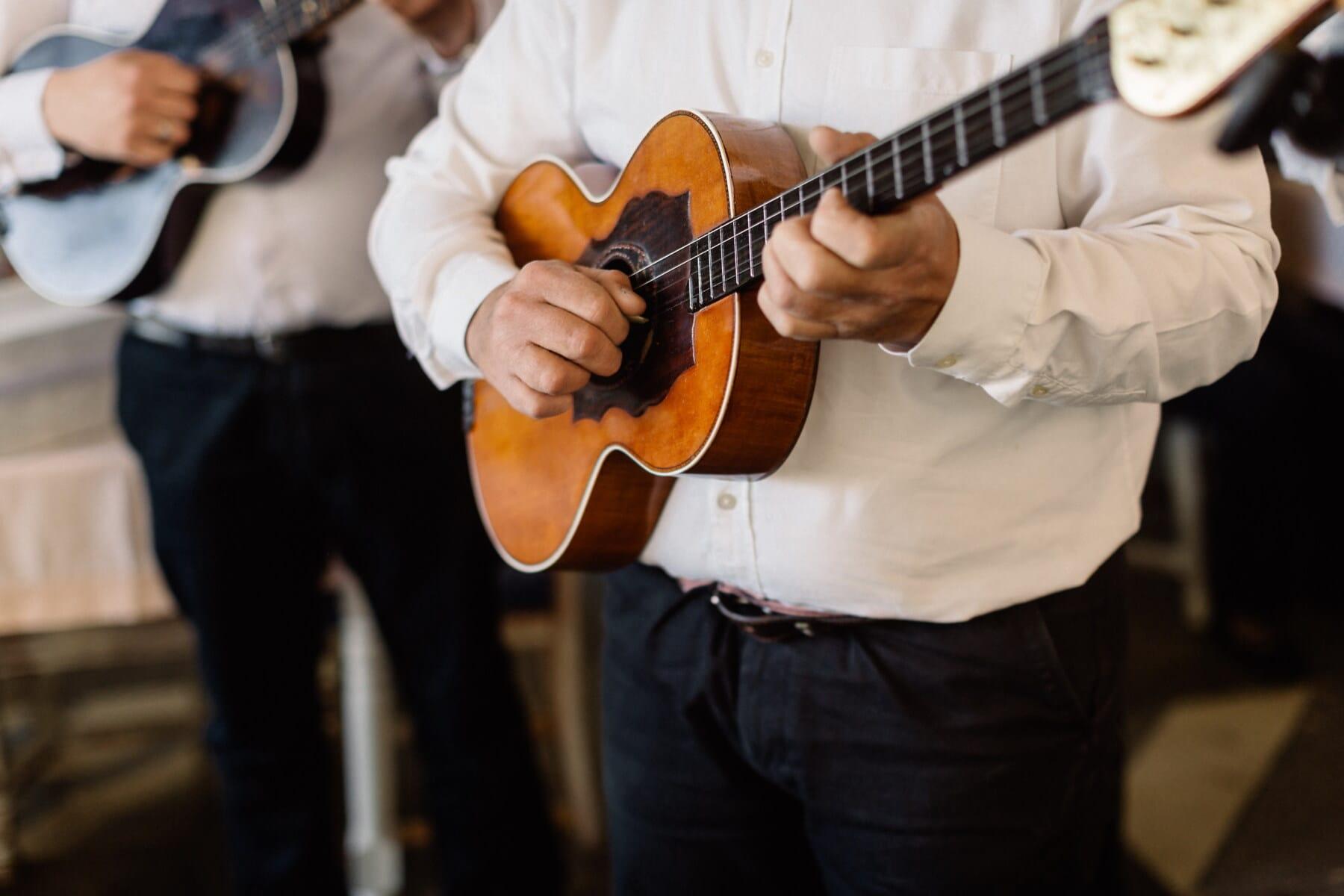 guitarist, orchestra, guitar, musician, folk, music, musical, rock, acoustic, instrument