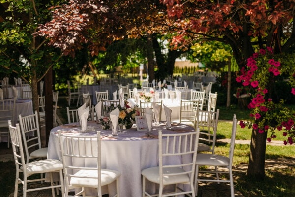 garden, park, wedding venue, elegant, vintage, backyard, chair, luxury, furniture, outdoors
