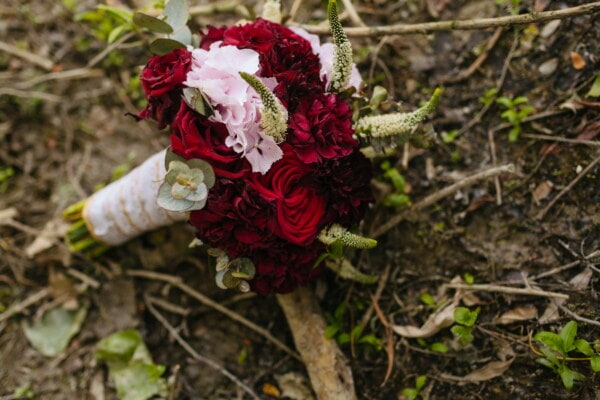 bouquet, wedding bouquet, dark red, roses, flower, herb, plant, leaf, rose, flora