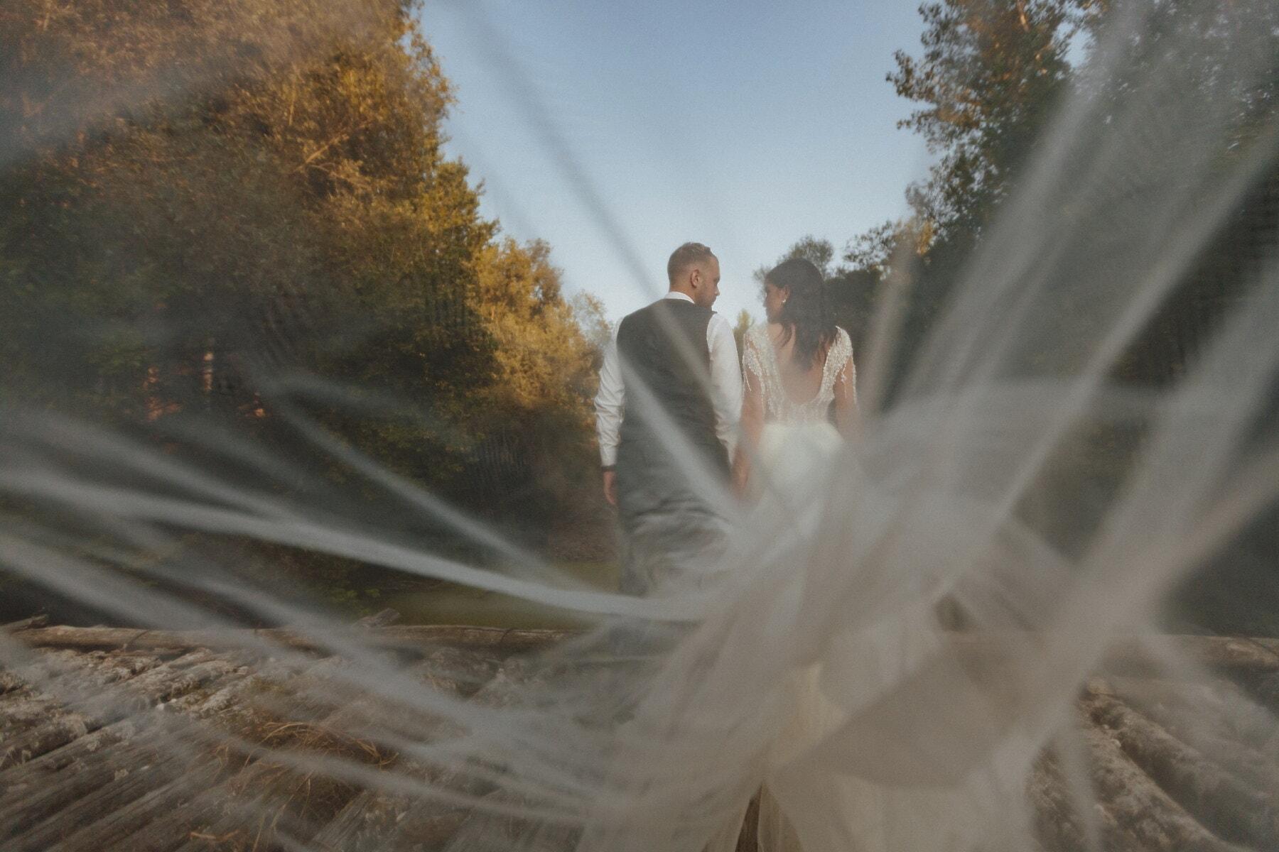 frisch verheiratet, Hochzeitskleid, Schleier, Hochzeit, Bräutigam, Liebe, Braut, Kleid, Frau, Mädchen