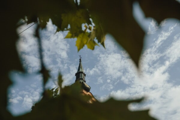 orthodox, church tower, distance, green leaves, branches, tree, leaf, nature, light, outdoors