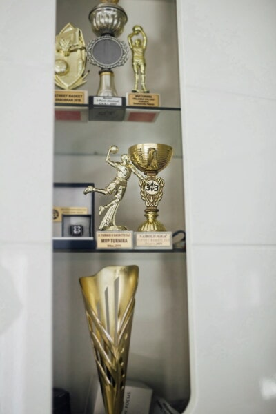 memorabilia, award, sculpture, achievement, sport, golden shine, bronze, figurine, indoors, interior design