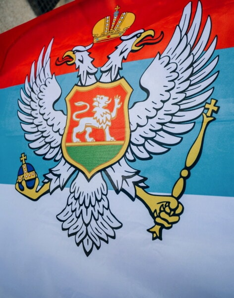 Serbia, eagle, heraldry, shield, illustration, emblem, flag, patriotism, design, knight