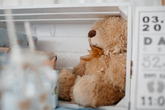 teddy bear toy, toy, vintage, light brown, box, gifts, wood, traditional, interior design, horizontal