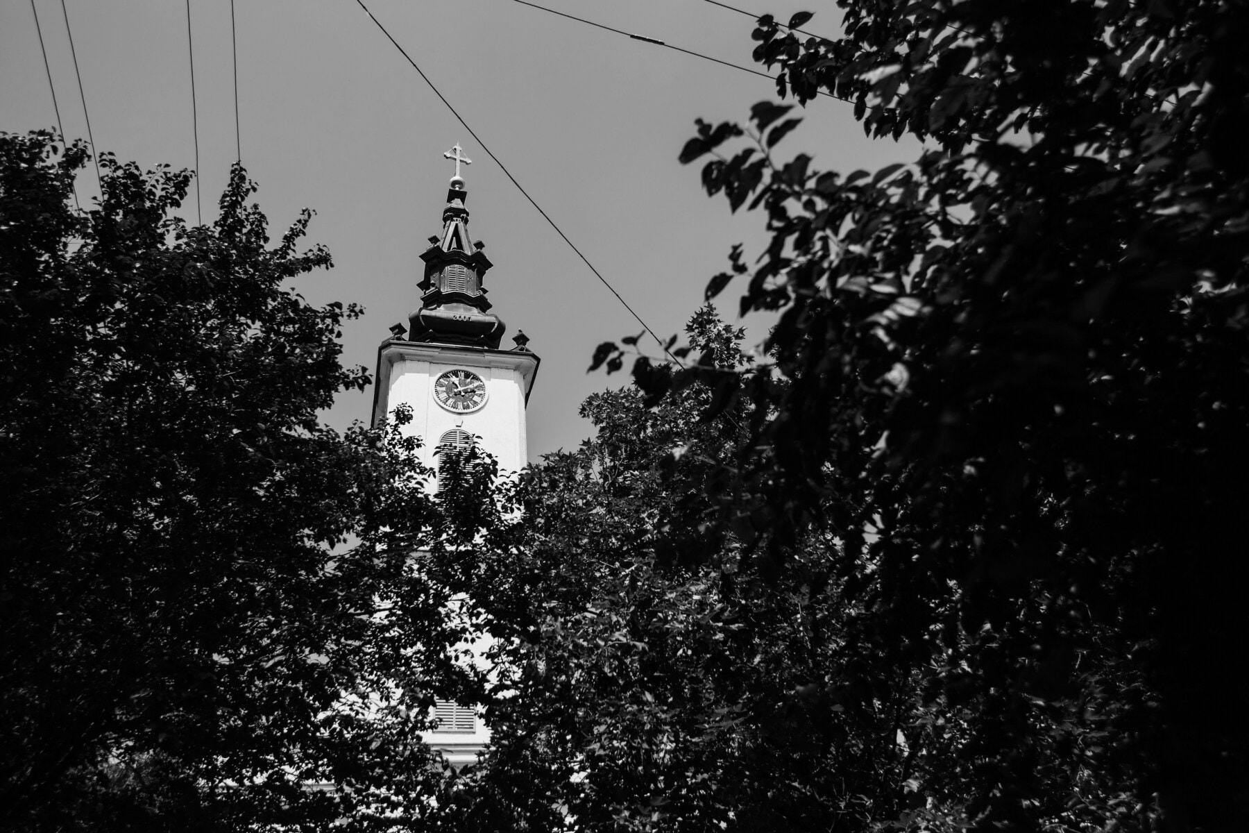crkveni toranj, stabla, grane, arhitektura, religija, toranj, crkva, zgrada, crno-bijelo, silueta