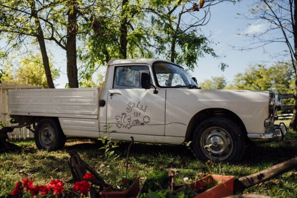 car, pickup, vintage, old fashioned, oldtimer, backyard, rural, village, vehicle, automobile