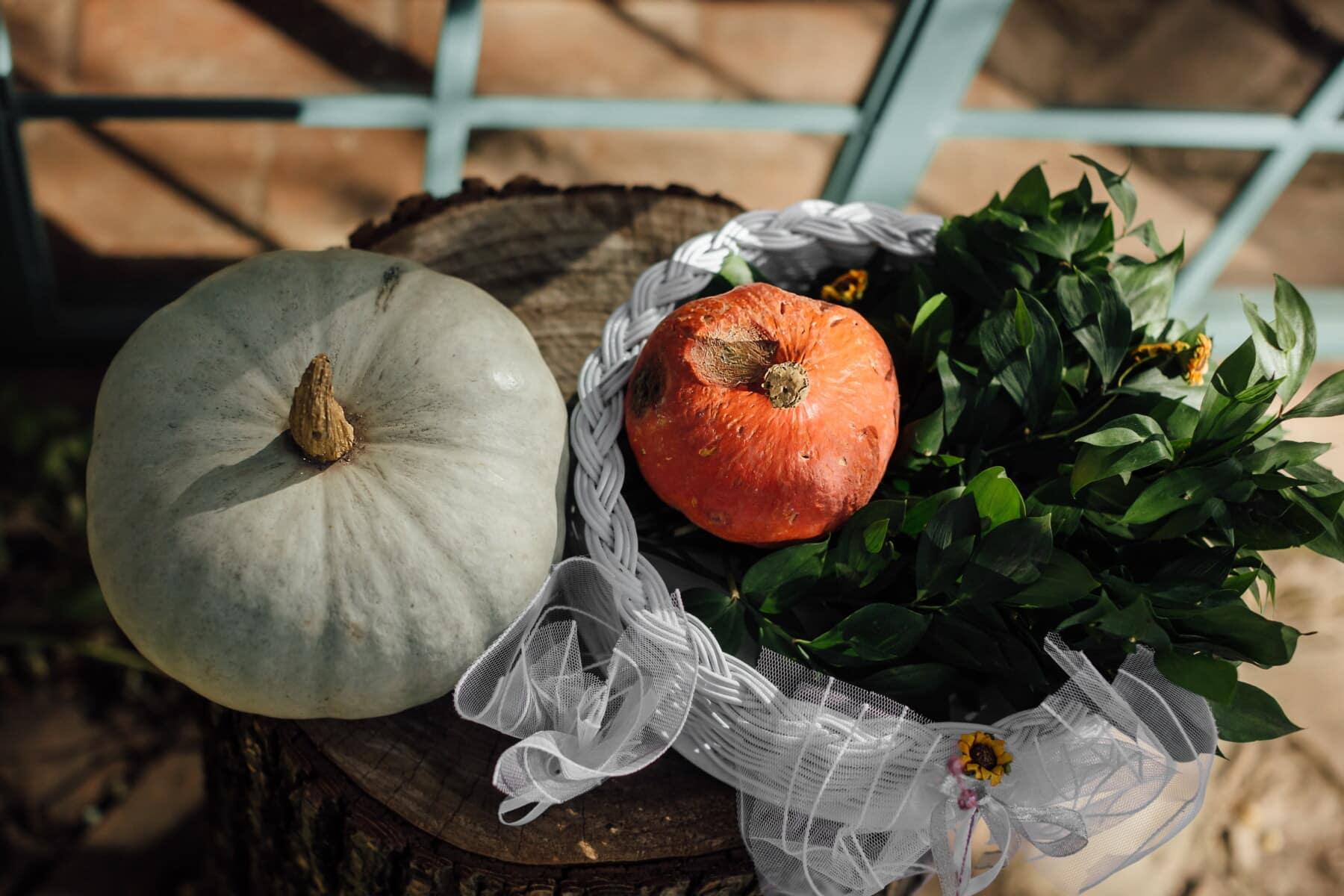 pumpkin, decoration, still life, autumn season, wicker basket, vintage, autumn, squash, vegetable, produce