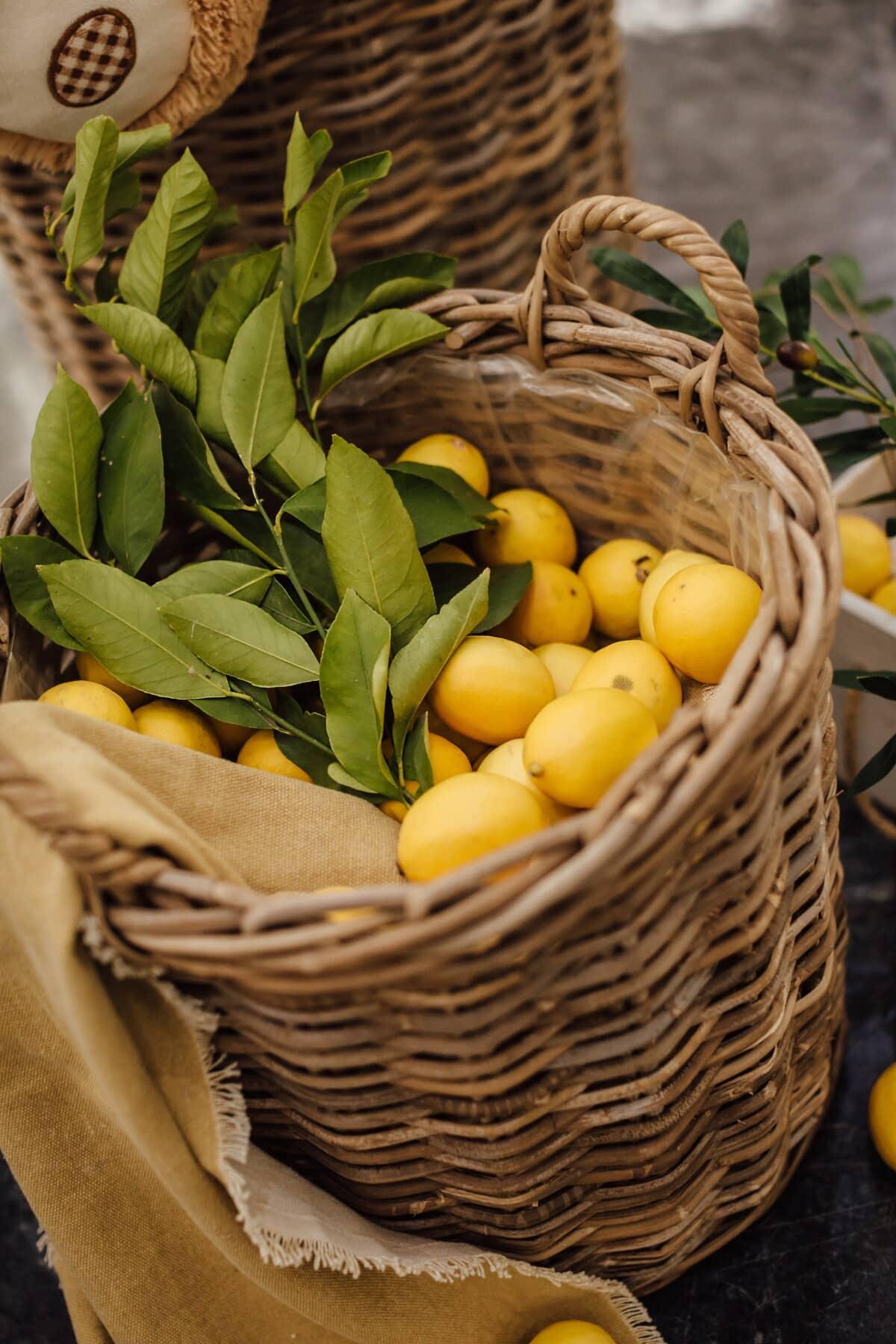 organic, lemon, wicker basket, marketplace, products, merchandise, basket, citrus, produce, fruit