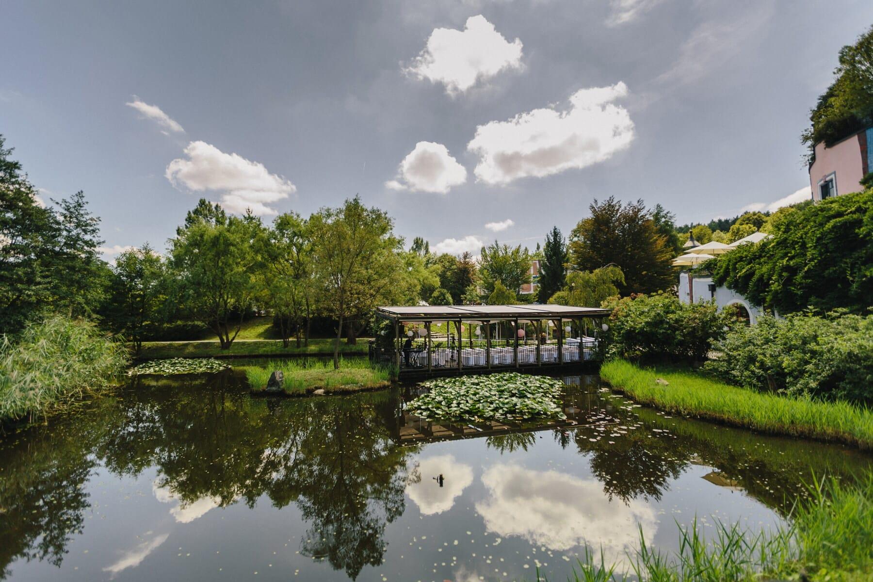 Garten, tropische, Seerose, Immobilien, Hinterhof, Schwimmbad, See, Wasser, Struktur, Natur