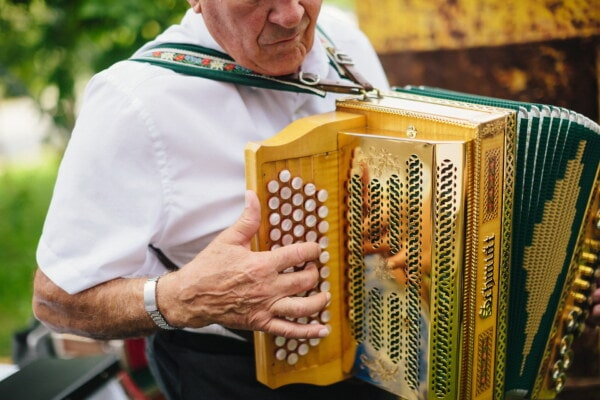 old style, accordion, golden shine, shining, fancy, performer, musician, man, elderly, music