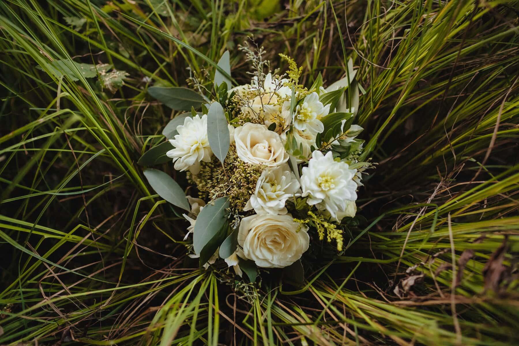 зелена трава, трав'янисті, букет, квіти, весна, рослина, цвітіння, завод, квітка, природа