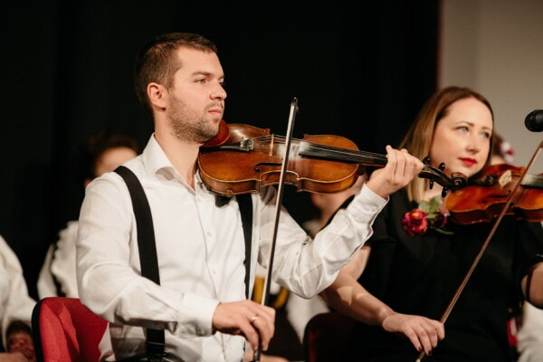 woman, violin, man, concert, performance, orchestra, performer, music, musician, instrument