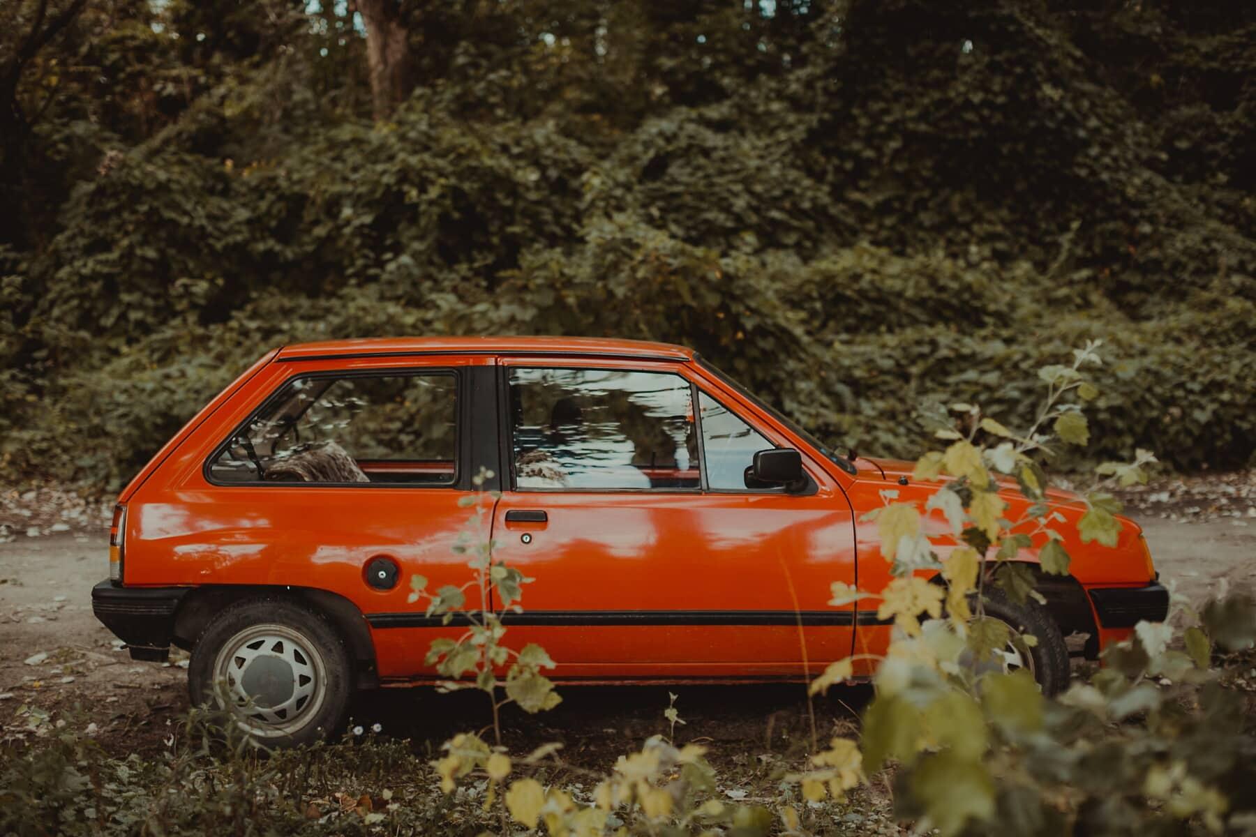 voiture, route forestière, forêt, nostalgie, vieux, oldtimer, véhicule, automobile, transport, Itinéraire