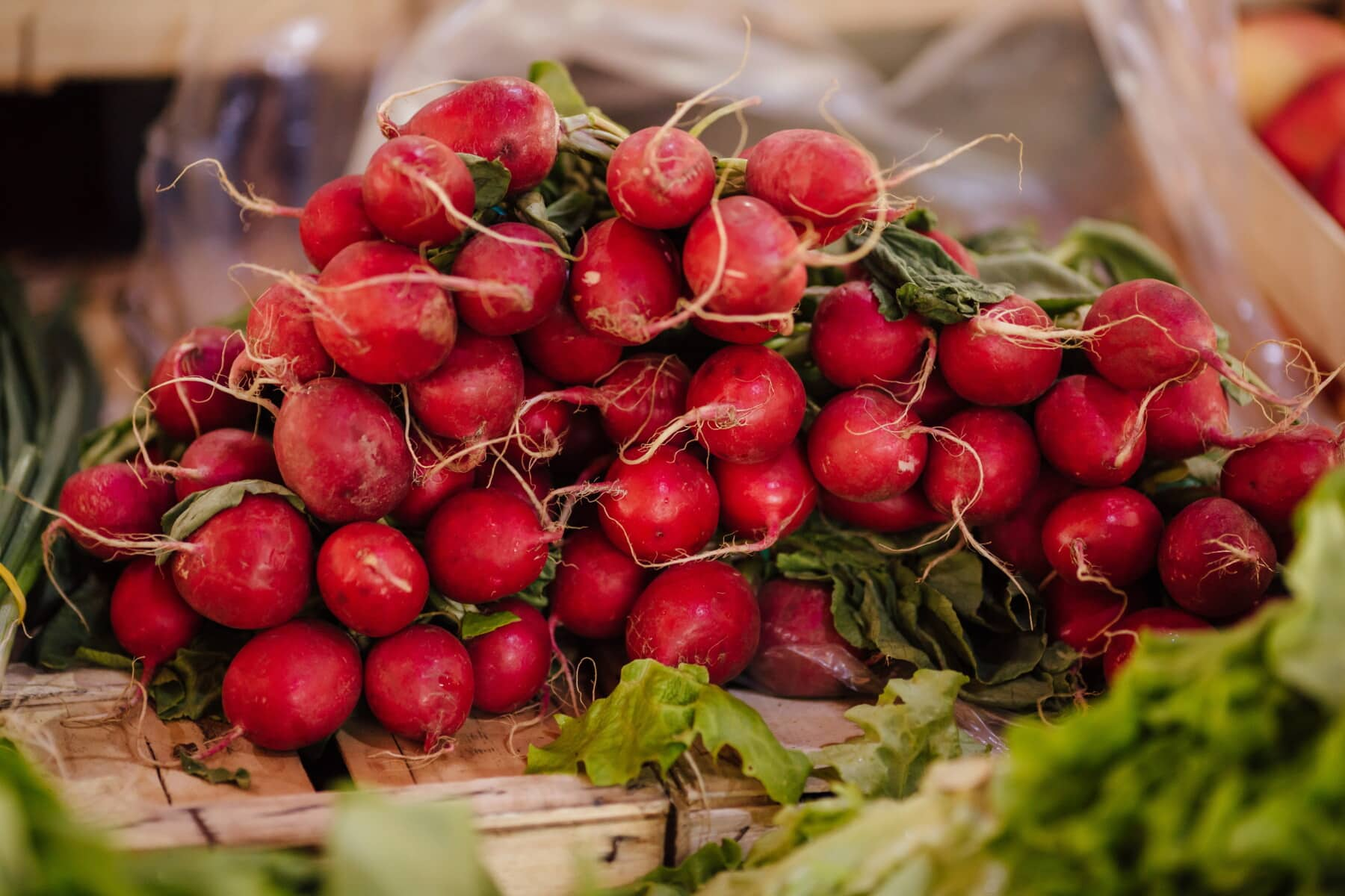 red, radish, shopping, vegetables, marketplace, agriculture, products, herb, vegetable, food
