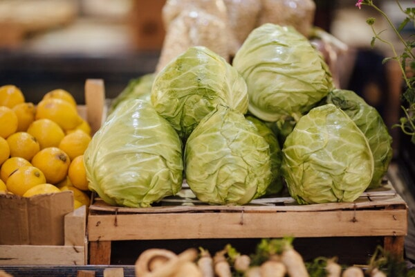 shopping, cabbage, marketplace, vegetables, fruit, lemon, health, food, market, healthy