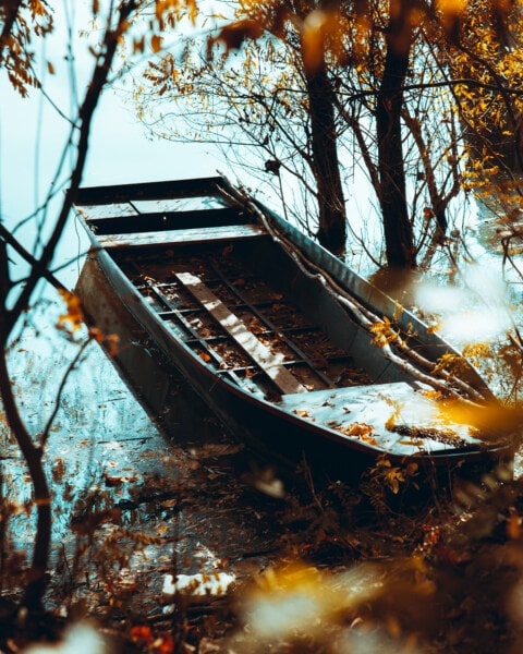 boat, old, autumn season, coastline, riverbank, tree, trees, wood, outdoors, water