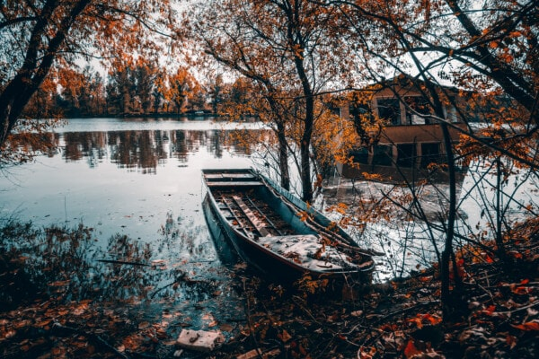 boat, boathouse, flood, tree, water, river, leaf, landscape, lake, wood