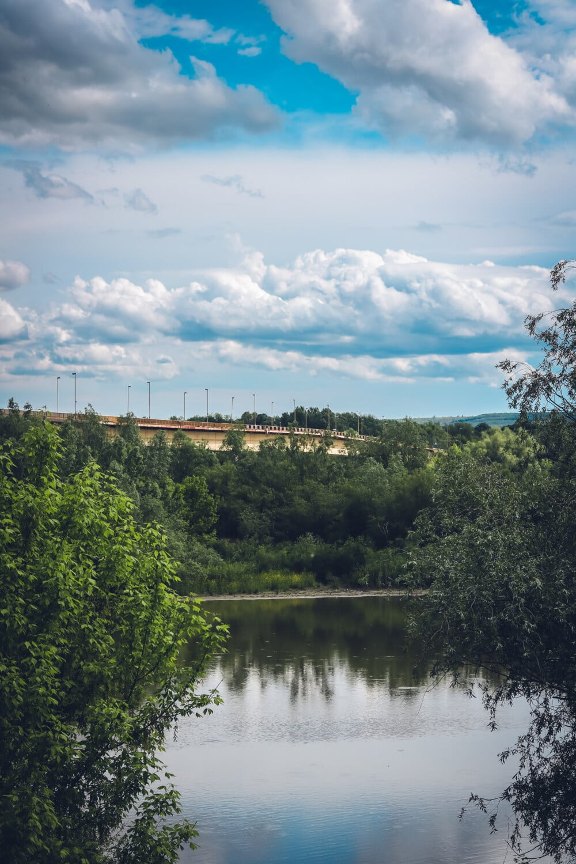 bridge, river, distance, water, tree, lake, nature, landscape, forest, wood