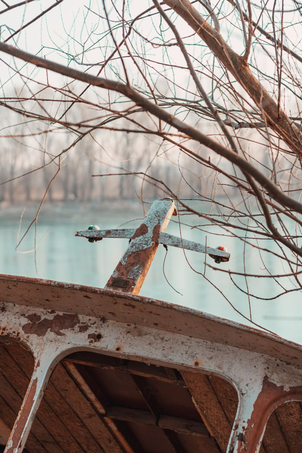 boat, wreck, tree, winter, wood, old, steel, nature, abandoned, outdoors